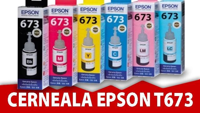 Cerneala Epson T673